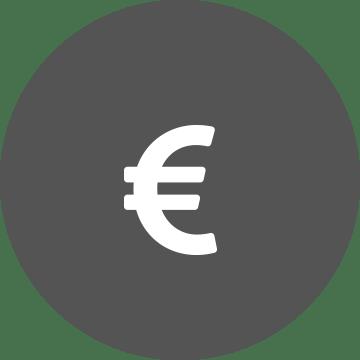 Logo for Euro